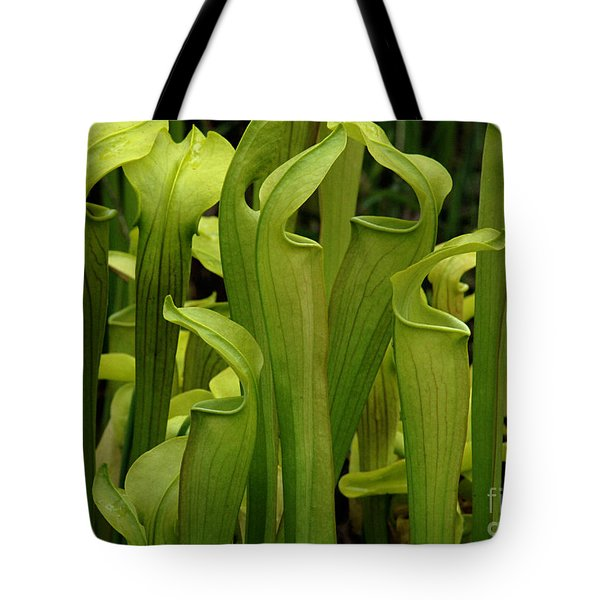 Pitcher Plants Tote Bag by Bob Christopher
