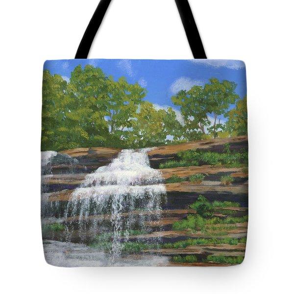 Pixley Falls Tote Bag by Lynne Reichhart