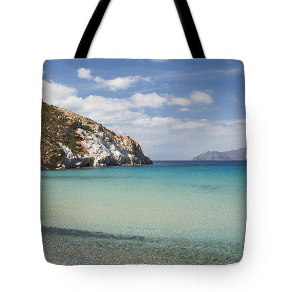Plathiena Beach Tote Bag