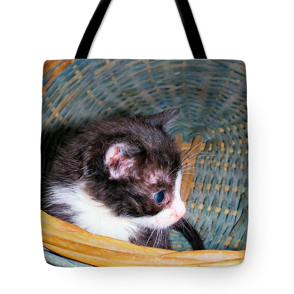Playtime Tote Bag by Art Dingo