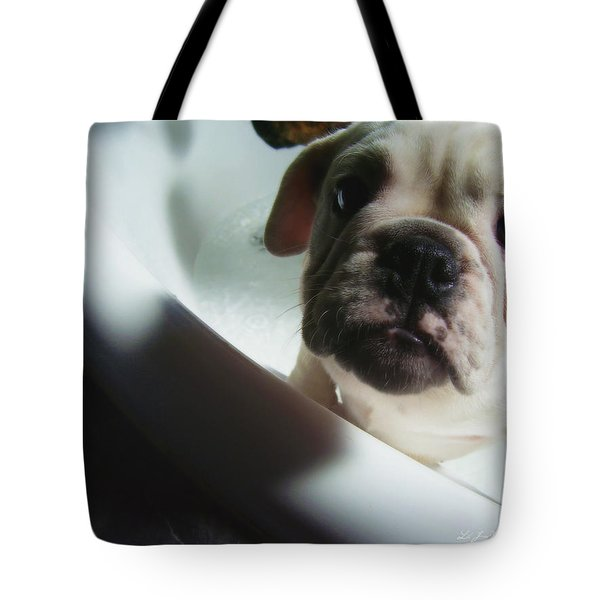Plea For Help Tote Bag by Jeanette C Landstrom