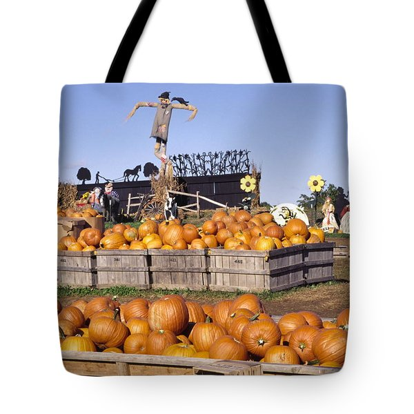 Plenty Of Pumpkins Tote Bag by Sally Weigand