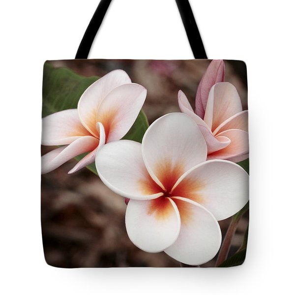 Plumeria   Kona Hawii Tote Bag by James Steele