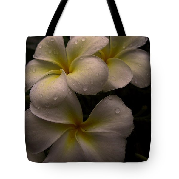 Plumeria Tote Bag by Dorothy Cunningham