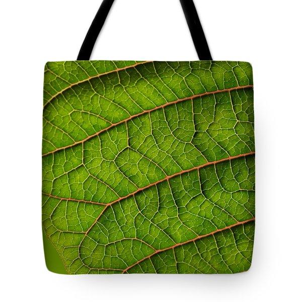 Poinsettia Leaf I Tote Bag
