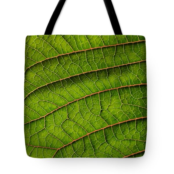 Poinsettia Leaf II Tote Bag