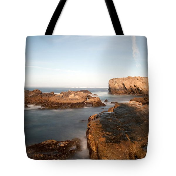 Point Lobos Number Three Tote Bag by Catherine Lau