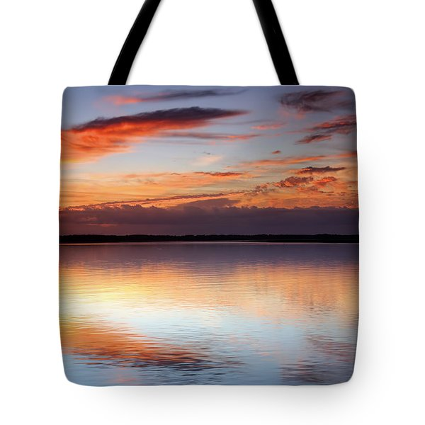 Pointing South Tote Bag by Phill Doherty