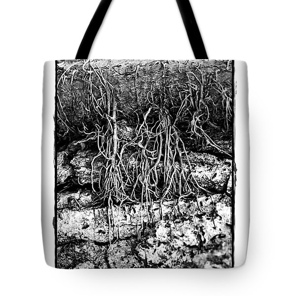 Poison Ivy Roots Tote Bag by Judi Bagwell