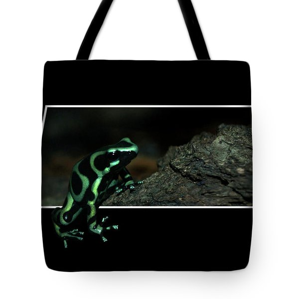 Poisonous Green Frog 02 Tote Bag by Thomas Woolworth