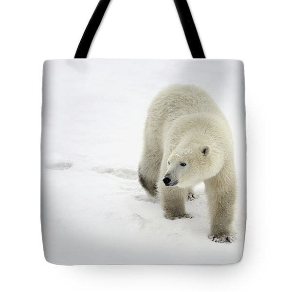 Polar Bear Walking Tote Bag