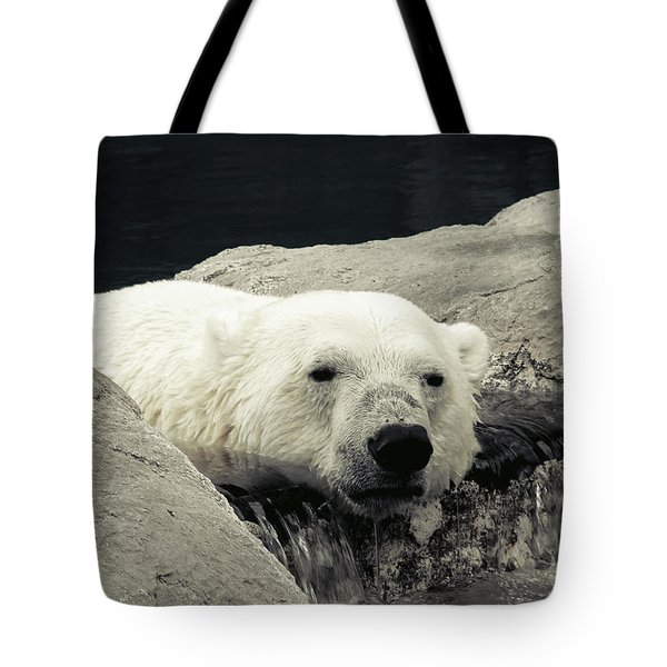Polar Relaxation Tote Bag