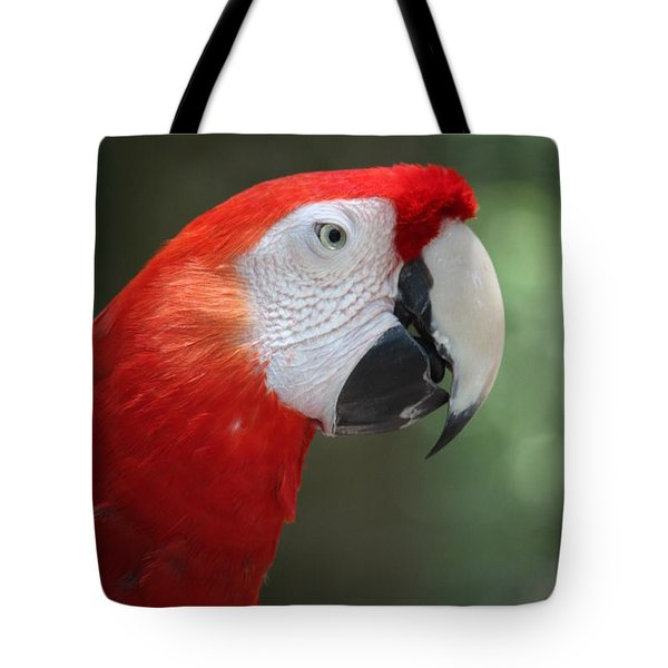 Tote Bag featuring the photograph Polly by Patrick Witz