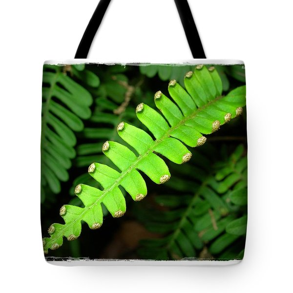 Polypody Tote Bag by Judi Bagwell