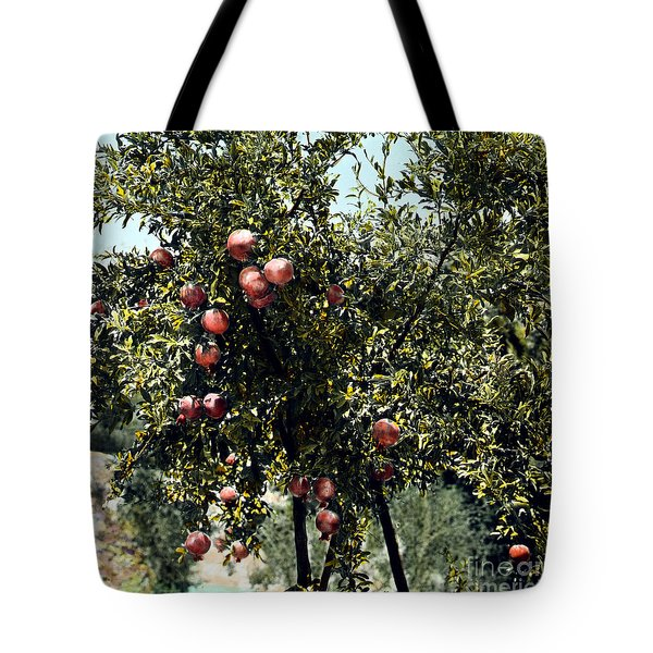 Pomegranate Tree Tote Bag by Granger