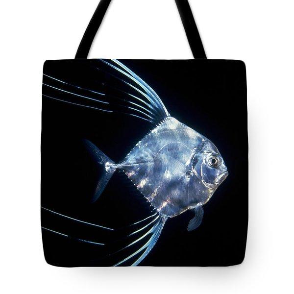 Pompano Juvenile Off  Manualita Island Tote Bag by Flip Nicklin
