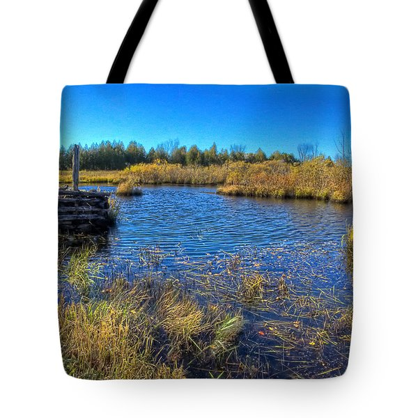 Pond 1 Today.psd Tote Bag