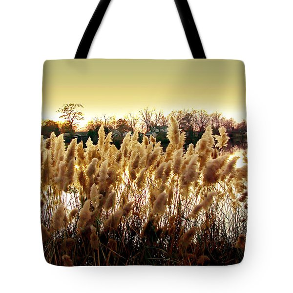 Pond Grasses Tote Bag by Brian Wallace