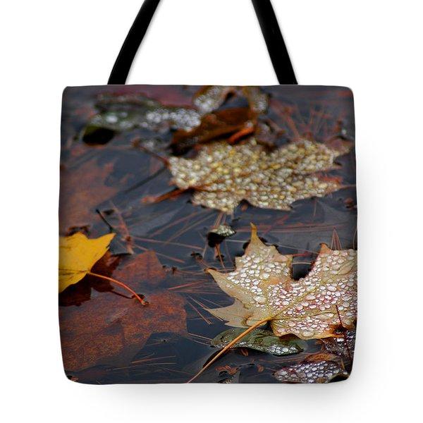 Pond Leaf Dew Drops Tote Bag by LeeAnn McLaneGoetz McLaneGoetzStudioLLCcom