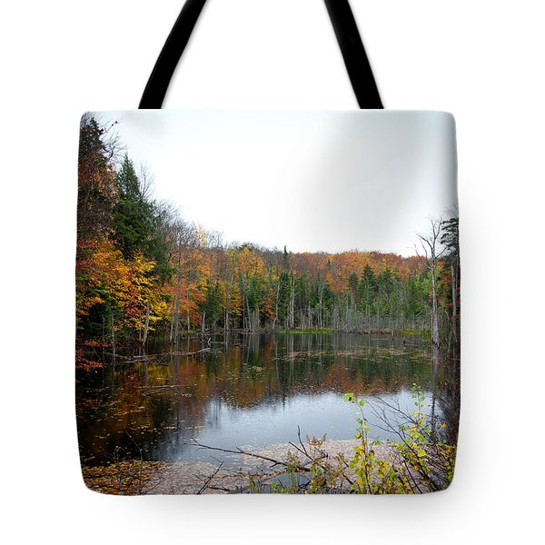 Pond On Limekiln Road In Inlet New York Tote Bag by David Patterson