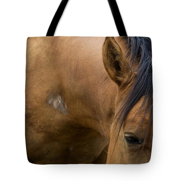 Tote Bag featuring the photograph Curious Pony by Lorraine Devon Wilke