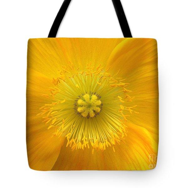 Poppy 2 Tote Bag