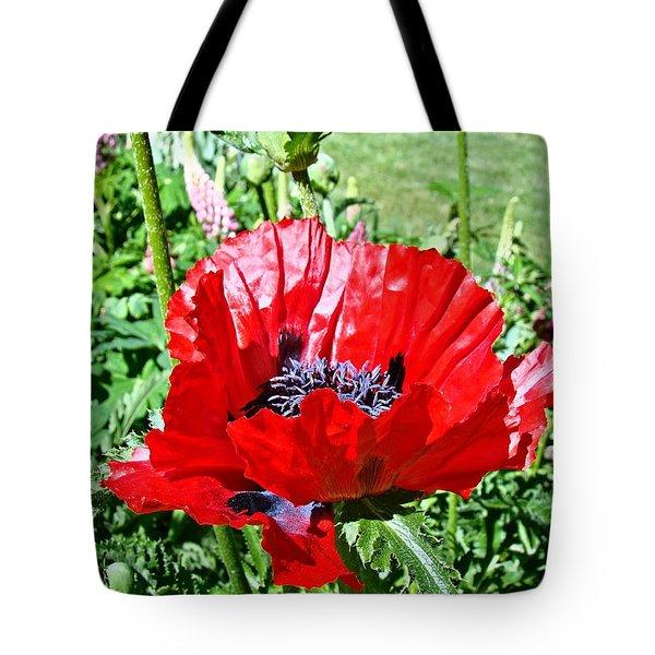 Poppy Tote Bag by Nick Kloepping