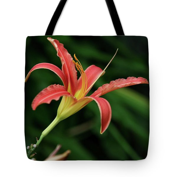 Tote Bag featuring the photograph Popsicle Bloom by Lorraine Devon Wilke