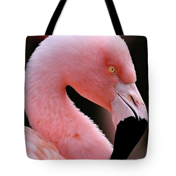 Portrait Of A Flamingo Tote Bag