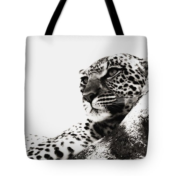 Portrait Of An African Leopard Tote Bag by Carson Ganci