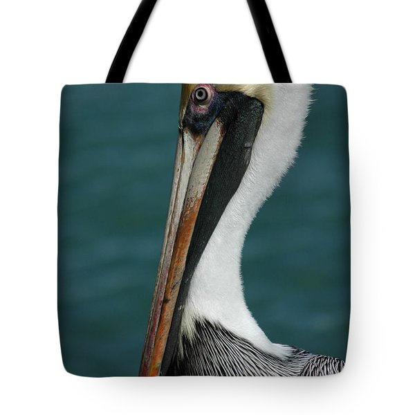 Tote Bag featuring the photograph Posing For The Tourists by Vivian Christopher
