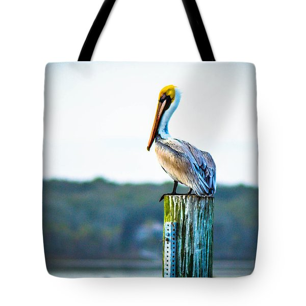 Tote Bag featuring the photograph Posing Pelican by Shannon Harrington