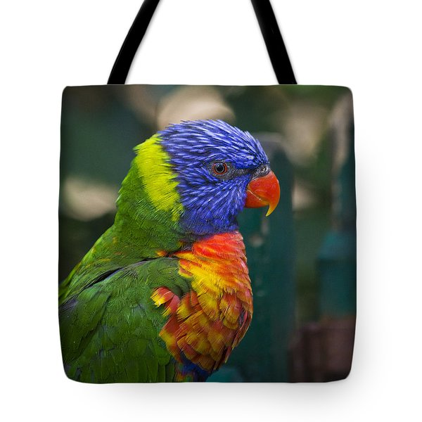 Posing Rainbow Lorikeet. Tote Bag