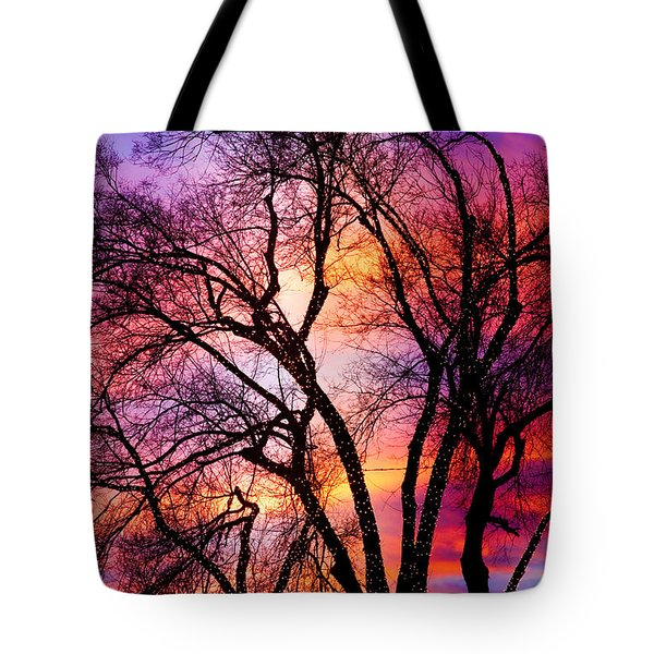 Powerful Trees Tote Bag by James BO  Insogna
