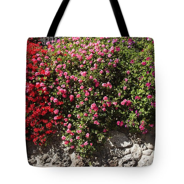 pr 356 Wallflowers Tote Bag by Chris Berry