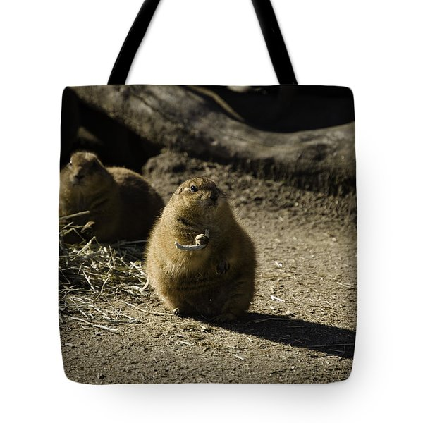 Prairie Dog Sees The Shadow Tote Bag
