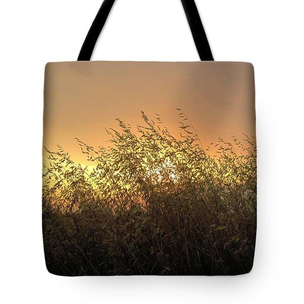 Prairie Dusk Tote Bag by Leanna Lomanski
