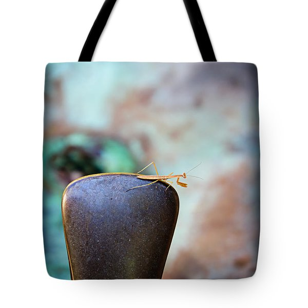 Praying For Water 1 Tote Bag by Andee Design