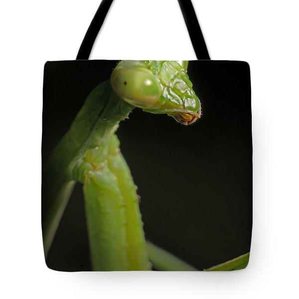 Praying Mantis Tote Bag by Art Whitton