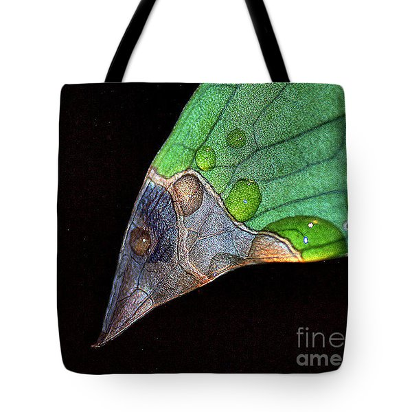 Predator Leaf Tote Bag by Irma BACKELANT GALLERIES