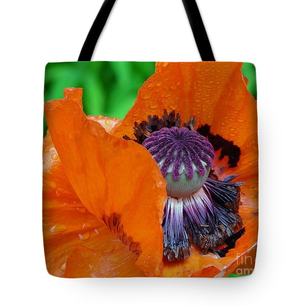 Pretentious Tote Bag by Priscilla Richardson