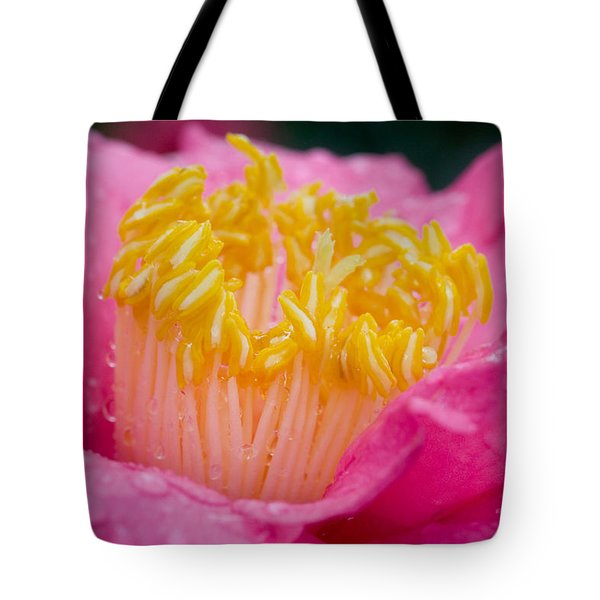 Pretty In Pink Tote Bag by Rich Franco