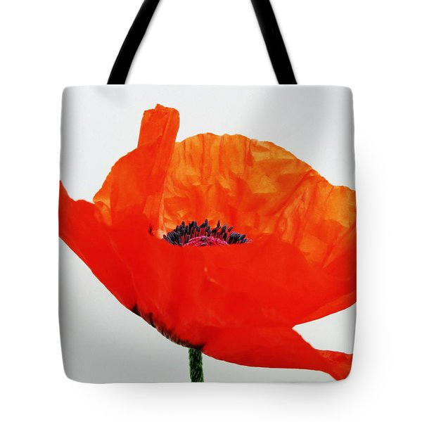 Pretty Poppy Tote Bag by Ramona Johnston