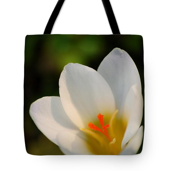 Pretty White Crocus Tote Bag