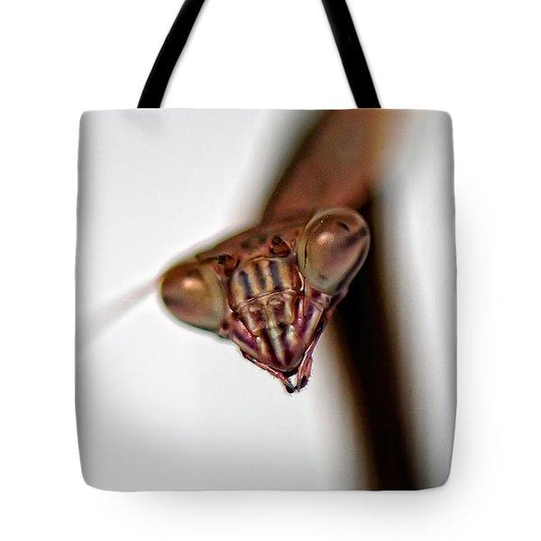 Preying Tote Bag by Lois Bryan