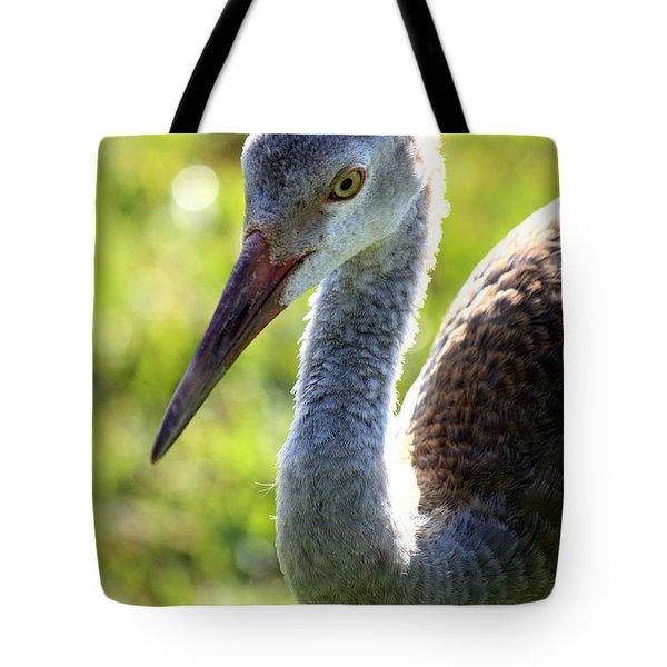 Prince Sandhill Tote Bag by Carol Groenen