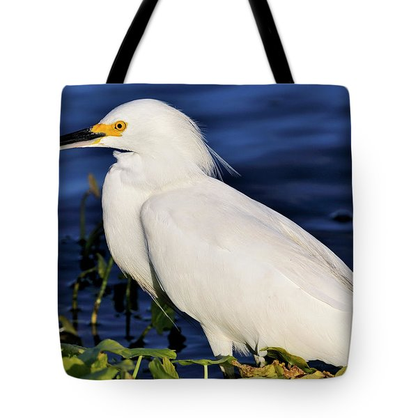 Profile Of A Snowy Egret Tote Bag