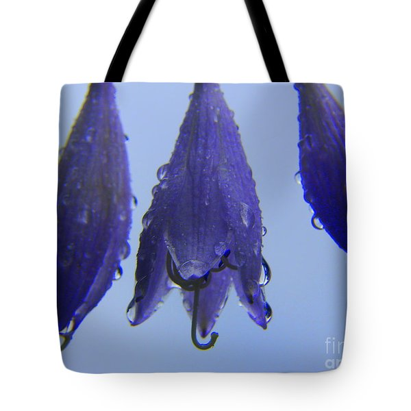 Promise Tote Bag by Priscilla Richardson