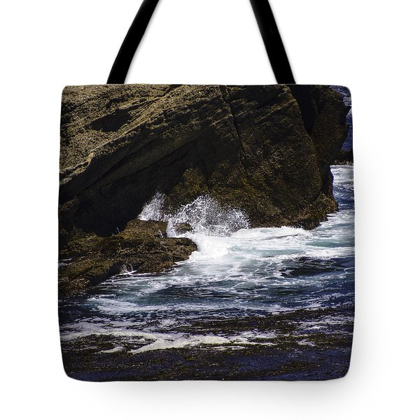 Protected From The Sea Tote Bag by Jo-Anne Gazo-McKim