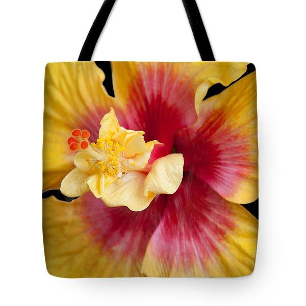 Pua Aloalo Kahaulani Lahilahi Tropical Hibiscus Hawaii Tote Bag